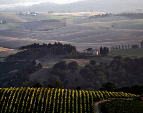 FOOD AND WINE ROUTE OF THE MAREMMA HILLS – Scansano