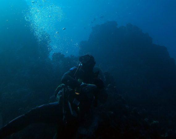 CORBELLA ISLAND – Capolivieri