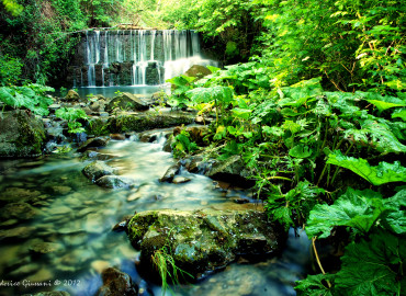 Terra e Acqua dell'Amiata