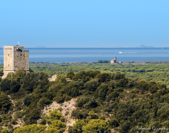 DISCOVERING COSTA D'ARGENTO