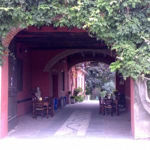 RISTORANTE LA VECCHIA PERGOLA – Isola del Giglio